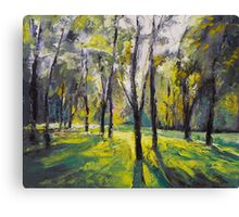 Pontefract Park at Sunset Canvas Print