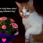 You&#x27;re Truely Meow-velous ~ Happy Valentine&#x27;s Day! by Marie Sharp