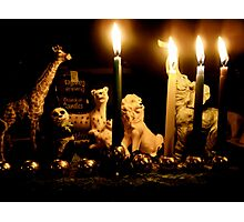 Happy Chanukah from the Wild Ones Photographic Print