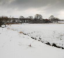 The Meads Snowfields by kernuak