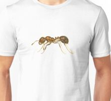 Red Imported Fire Ant (Solenopsis invicta) Unisex T-Shirt