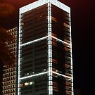 The Platinum Tower by Havoc