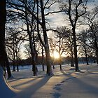 Footsteps in the Snow in Victoria Park Peebles, Scottish Borders by rosie320d