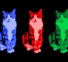 Grumpy Pop Art Cat by Auslandesign