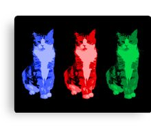 Grumpy Pop Art Cat Canvas Print