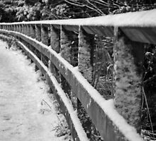 hand rail covered in snow by theo311