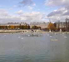 Jardin des Tuileries, Paris '09 by Elsa Thorp