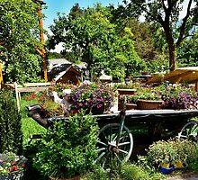 Country Wagon with Flowers by Elzbieta Fazel