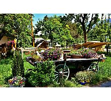 Country Wagon with Flowers Photographic Print