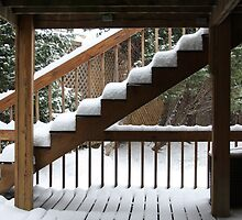 Winters ' Charm  ! by shadyuk
