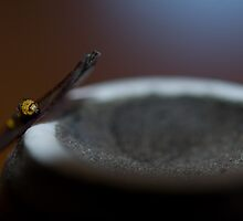 Life on the edge of a Sake Cup by salsbells69