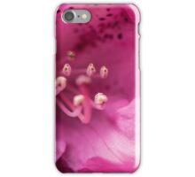 Pink flower close-up iPhone Case/Skin