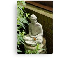 Budda and Friends Canvas Print