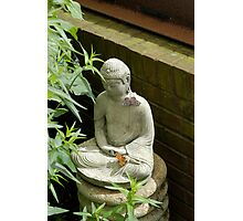 Budda and Friends Photographic Print