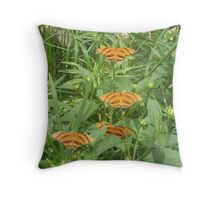 Meeting of Banded Orange Butterflies Throw Pillow