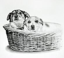 Basket of Joy by Melanie Deroon