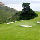 Torrey Pines Golf Course ~ La Jolla, California by John and Marie  Sharp