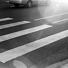 Crossing by genlloyd