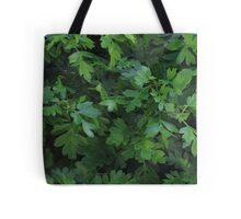 Natural fresh green leaves Tote Bag