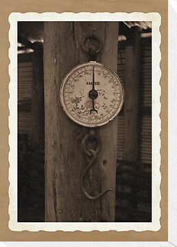 Old fashioned scales by Deborah McGrath