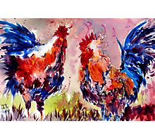 Rooster Rumble Photographic Print