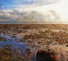 beach rock by DARREL NEAVES