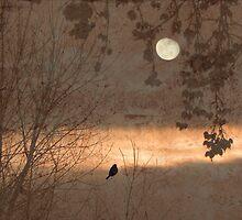 Bright Spot In The Gloom by Zoe Marlowe