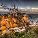 Reach For The Sky - Great Ocean Road - The HDR Experience by Philip Johnson
