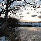 Cold by Dfilmuk Photos