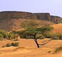 an inspiring Mauritania landscape by beautifulscenes