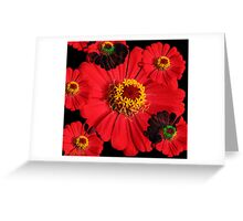 Thunderous Silence Greeting Card