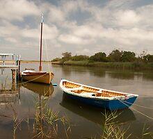 Brodribb River, Marlo, Victoria by SusanAdey