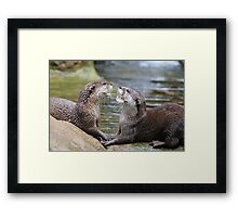 hungry otters Framed Print