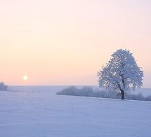sunset in winter by WOODU