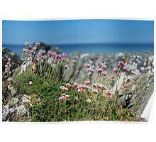 Isle of Gigha Beach Scene Poster