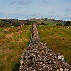 Hadrian's wall by Jaime Pharr
