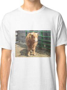 Moose 23 April 2015 Classic T-Shirt