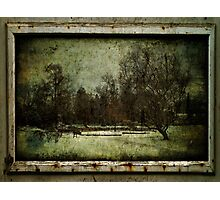 Once upon a Time there was a beautiful Garden Photographic Print