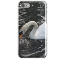 Swan diving for food iPhone Case/Skin