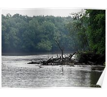Drift wood along the Shore of the Mississippi Poster