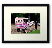 Taxi Senhor? Framed Print