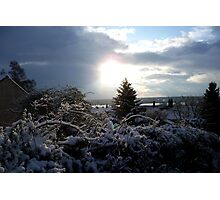 the sun through the snow Photographic Print