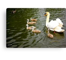 Mum with Babies Canvas Print