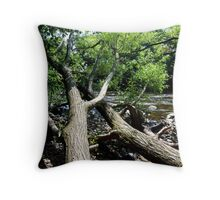trees over the river swale, yorkshire Throw Pillow