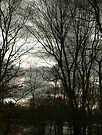 Cloudy Evening Right After Sunset by BCallahan