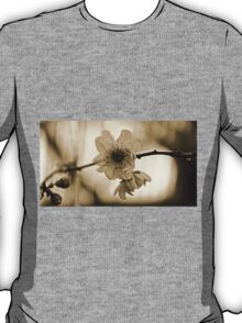 Cherry Blossom in Sepia  T-Shirt
