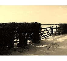 An idle gate Photographic Print