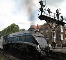Sir Nigel Gresley, I assume? by ellismorleyphto
