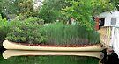 Sebago Canoe Club by andytechie