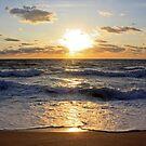 December Sunrise - I by Donna R. Carter